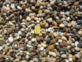 We sell Atlantic Pebbles for the garden